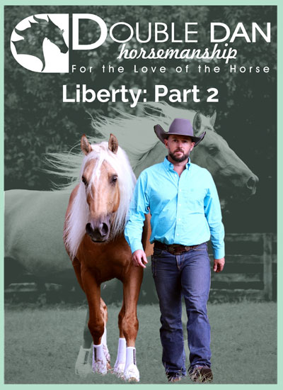 liberty-part-2-cover